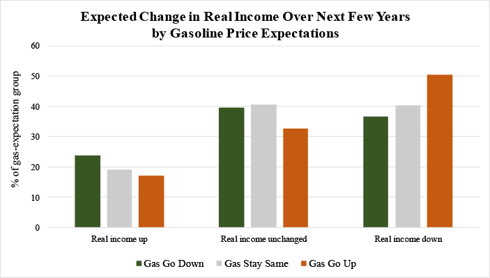 Figure 3: Expected Change in Real Income Over Next Few Years by Gasoline Price Expectations. See accessible link for data.