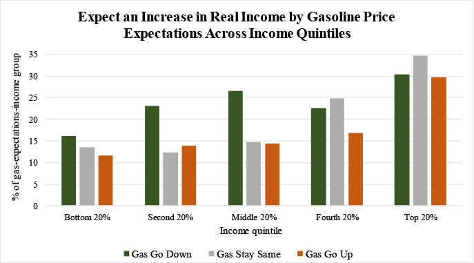Figure 4: Expect an Increase in Real Income by Gasoline Price Expectations Across Income Quintiles. See accessible link for data.