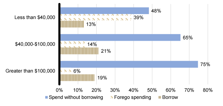 Figure 2: Holiday spending and borrowing decisions (by family income). See accessible link for data.