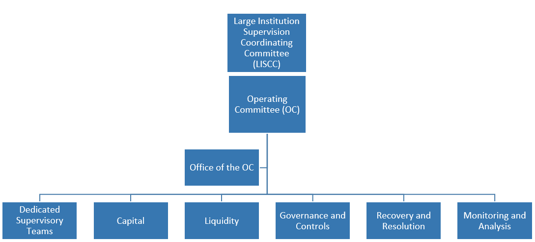 The flowchart shows the Large Institution Supervision Coordinating Committee (LISCC) supervisory program structure. The LISCC supervisory program structure is headed by the LISCC.  The Operating Committee (OC) executes the LISCC supervisory program, and is supported by the Office of the OC.  The Dedicated Supervisory Teams (DSTs), and five portfolio programs, which include (1) the Capital Program, (2) the Liquidity Program, (3) the Governance and Controls (G&C) Program, (4) the Recovery and Resolution Preparedness (RRP) Program, and (5) the Monitoring and Analysis Program (MAP), have specific responsibilities and report to the OC and ultimately the LISCC.